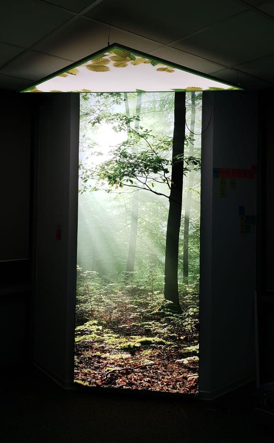 led caja de luz